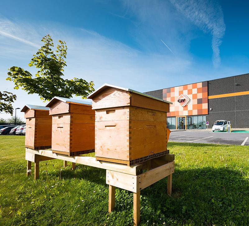 Photo de CIV avec ruches en premier plan © Laurent Ghesquiere Photographe +33 (0)6 63 23 11 08 France